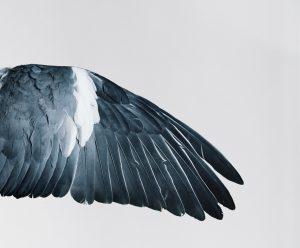 2011 130 cm X 120 cm. Impression jet d'encre pigmentaire sur papier mat coton 308 gr. Edition limitée à 7 exemplaires + 2 épreuves d'artiste. N° 3/7 Encadrement sur mesure, contactez-moi.